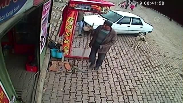Son dakika haberleri   AFYONKARAHİSAR - Belediye işçilerinin peşlerine takılan köpekleri ekmekle beslemesi kameralara yansıdı