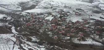Mustafa Özarslan: Son dakika haberi | Aşık Veysel ölümünün 48. yılında Sivas'taki mezarı başında anıldı