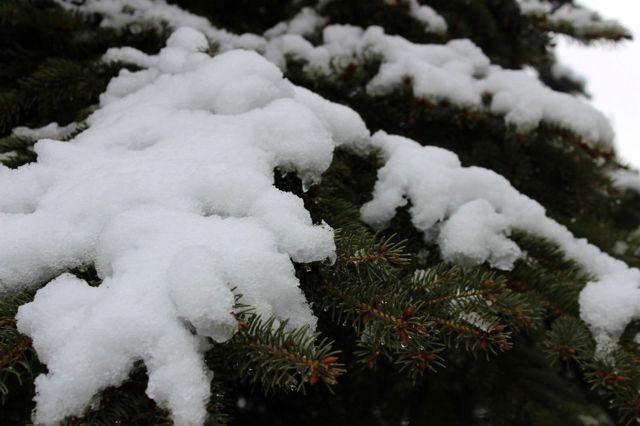 Afyonkarahisar 'Mart' ayını karla uğurladı