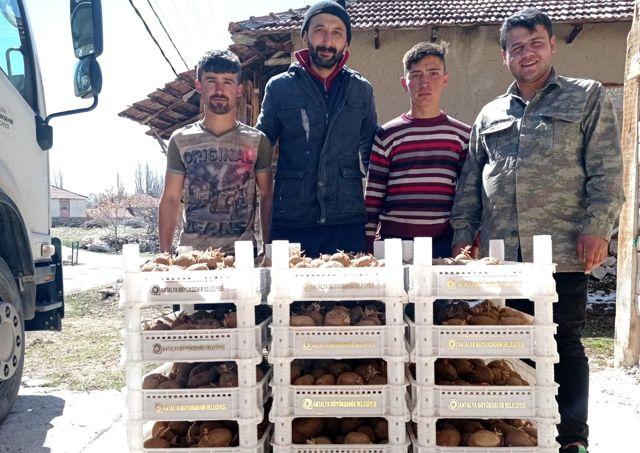 Biyolojik mücadele için Korkuteli'de patates yetiştirilecek