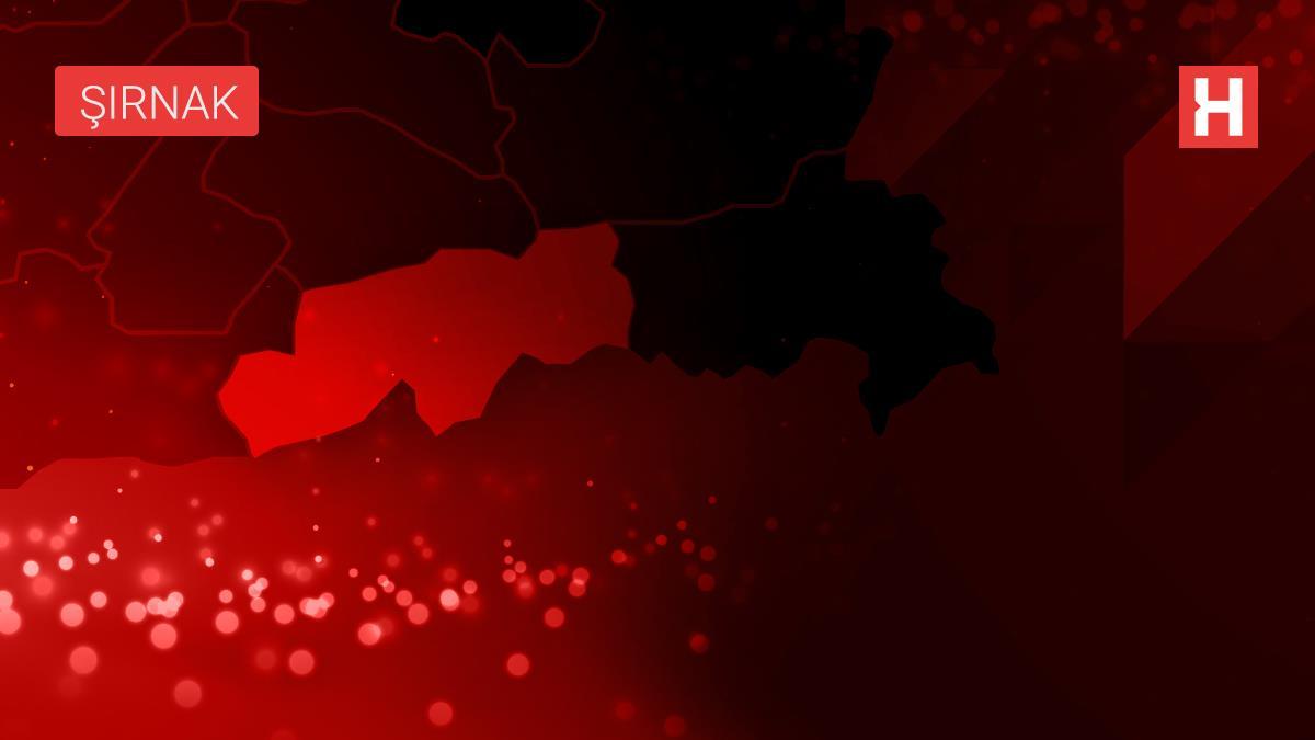 Çin'in Doğu Türkistan politikaları Şırnak'ta protesto edildi