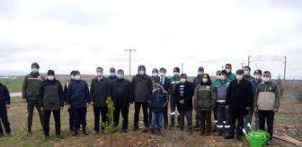 Orman Haftası: Şehit Neşet Gök Hatıra Ormanı'na yeni fidanlar dikildi