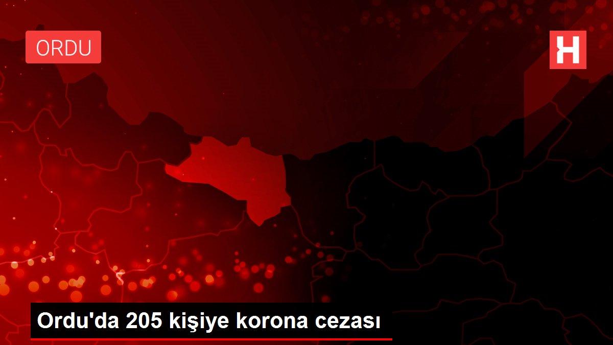 Ordu'da 205 kişiye korona cezası