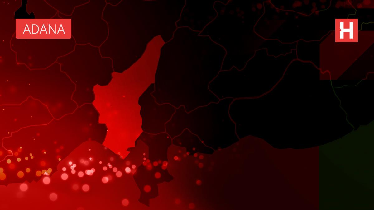 Adana'da otomobil elektrik direğine çarptı: 2 yaralı