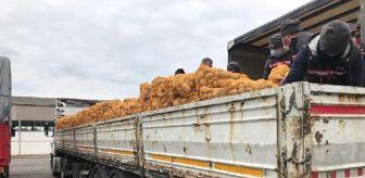 Maltepe: Son dakika haberi: Üreticiden alınan patates ve soğanlar, ihtiyaç sahibi 164 bin aileye ulaştırılacak