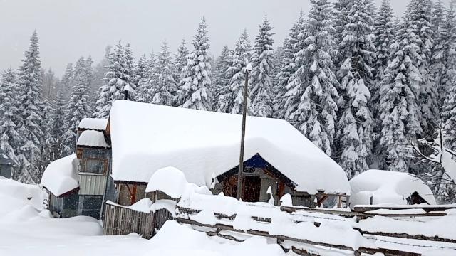 Ne Kars ne de Erzurum! Düzce'de Nisan ayında kar sürprizi, kalınlığı 120 santimetreye ulaştı