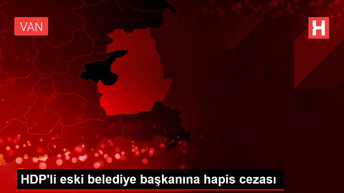 HDP'li eski Erciş Belediye Başkanı Çetin'e terör örgütü üyeliği ve propaganda suçundan 9 yıl hapis cezası verildi