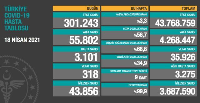 Tedbir üstüne tedbir geliyor ama kabus bitmiyor! Türkiye'de günlük ölüm sayısı 318 ile en yüksek seviyeye çıktı