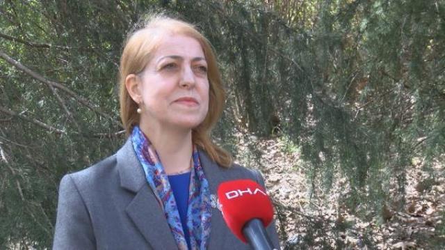 Prof. Dr. Sevinç Asilhan'dan küresel ısınmayla ilgili ürperten sözler: İstanbul'un bütün meteorolojik özellikleri değişecek
