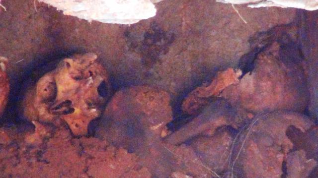 Su kanalı kazısından antik mezar çıktı! 6 tana kafatası bulundu