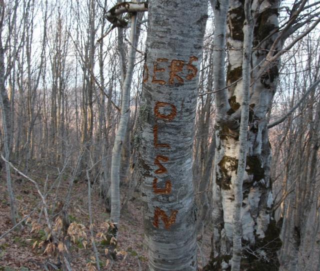 Köyde bir garip olay! Su borularını kırıp ağa 'Ders olsun' yazdılar