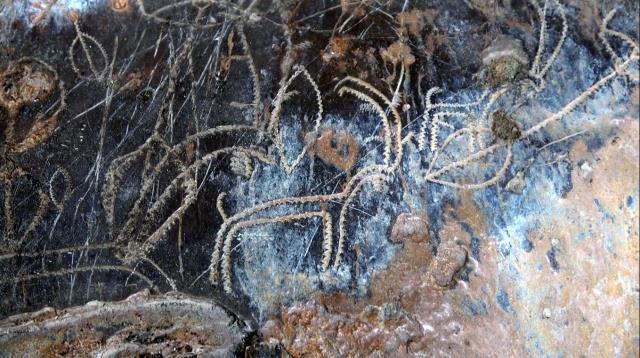 Arkeologları heyecanlandıran figürler: Mersin'de yaklaşık 8 bin yıllık resimler bulundu