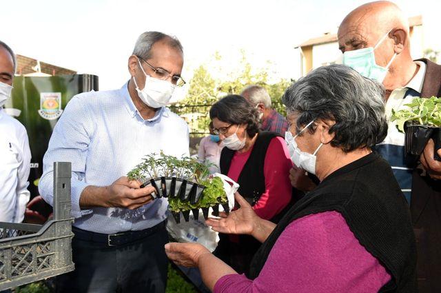 Tarsus'ta çitçilere 300 bin fide dağıtıldı