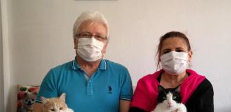 Metin Çakır: Bu otelde kediler çok rahat