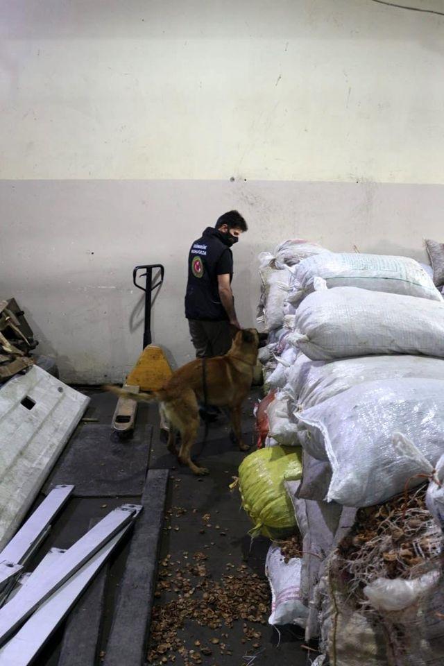 Ceviz kabuklarının içerisine gizlenmiş 153 kilo 550 gram afyon sakızı ele geçirildi