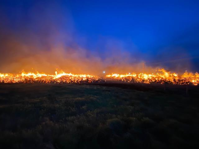 Afyonkarahisar'da panik devam ediyor! Enerji santralindeki yangın 80 bin metrekarelik alana yayıldı