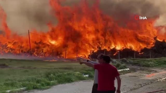 Son dakika haberi... Afyonkarahisar'ın Çay ilçesinde Biyokütle Enerji Santrali'nde yangın çıktı