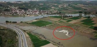 Boğazköy Barajı: İNEGÖL'DE PELİKAN SÜRPRİZİ