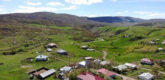 Mehmet Yılmaz: Tam kapanmayla köy ve yazlıklara ilgi arttı
