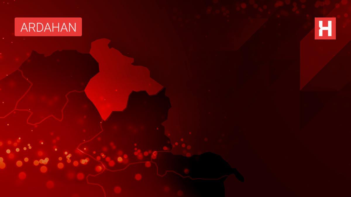 Ardahan'da jandarmanın yaralı bulduğu kızıl şahin tedaviye alındı