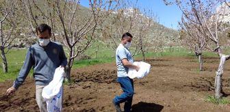 Arı Yetiştiricileri Birliği: Gündoğmuş'ta üreticilere arı otu verildi