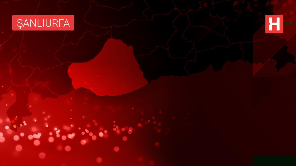 Şanlıurfa'da refüje çarpan otomobil devrildi: 5 yaralı