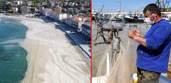 Marmaraereğlisi: Deniz salyası kabusu bu kez Tekirdağ sahillerinde görüldü! Avlanmaya çıkan balıkçıların ağları yırtıldı