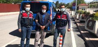 Jandarma: Elazığ'da çalınan hayvanların şüphelisi, Şanlıurfa'da yakalandı