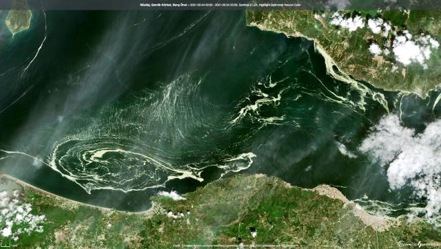 Marmara Denizi'nin büyük bir bölümünü kaplayan deniz salyası uydudan görüntülendi
