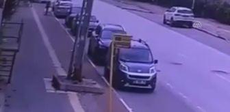 Mudanya: Son dakika haber... Villa bahçesine devrilen otomobilin sürücüsü öldü