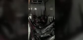 Gökçeada: ÇANAKKALE - Yasa dışı kılıç balığı avcılığı operasyonu