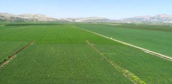 Türk Lirası: DSİ: 'Diyarbakır'da 577 bin 670 dekar arazi sulanacak'