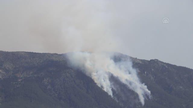 Son dakika gündem: Denizli'de çıkan orman yangını kontrol altına alındı