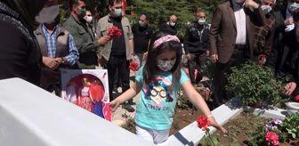 Mehmet Saygılı: Son dakika haberleri: 6 yaşındaki Eslem'den şehit babasına karanfil: 'Bu çiçekleri senin için diktim'