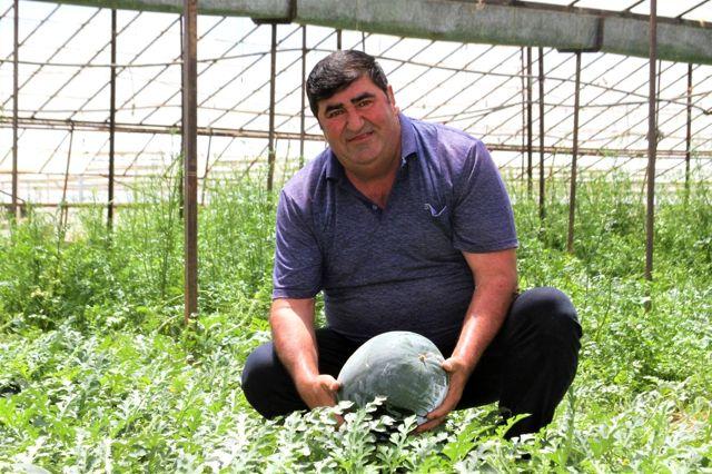 Kardeşini kanserden kaybeden çiftçi, doğal yollardan kekik aromalı karpuz üretti