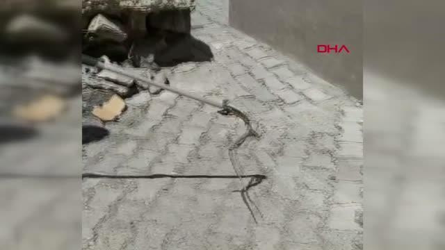 Son dakika haberi: Evin bahçesindeki yılanı itfaiye görevlisi yakaladı