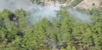 Mustafa Ersoy: Son dakika haberi: Kızılçam ormanında çıkan yangın kontrol altına alındı