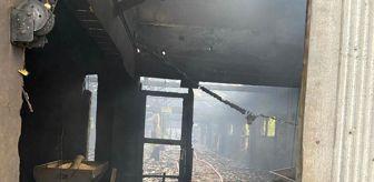 Sakarya: Sakarya'da tavuk çiftliğinde yangın: 10 bin 500 civciv telef oldu