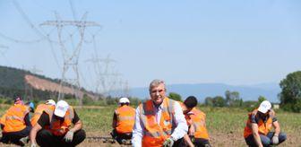 Bedrullah Erçin: Sakarya'da ata tohumları toprakla buluştu