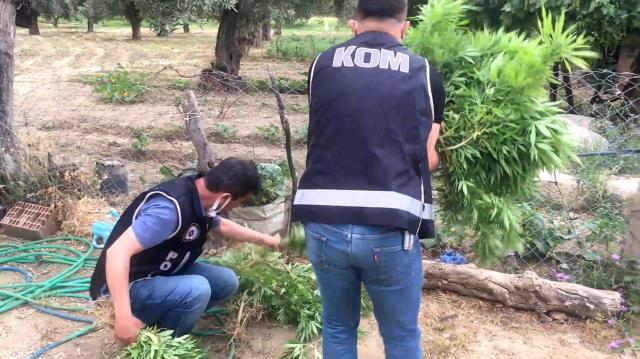 Organize suç örgütlerine düzenlenen 'Sahil Rüzgarı' operasyonunun detayları ortaya çıktı