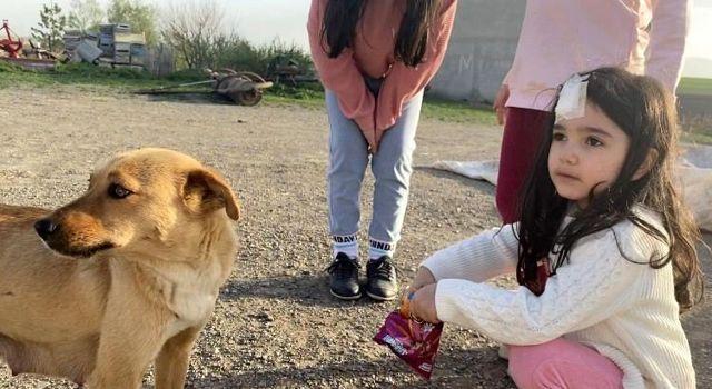 Son dakika haberleri: Ağrı'da gülümseten görüntüler...Çocuklar köpeğe cips yedirdi