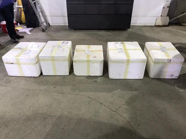 Kargo aracında 40 kilo 304 gram eroin ele geçirildi