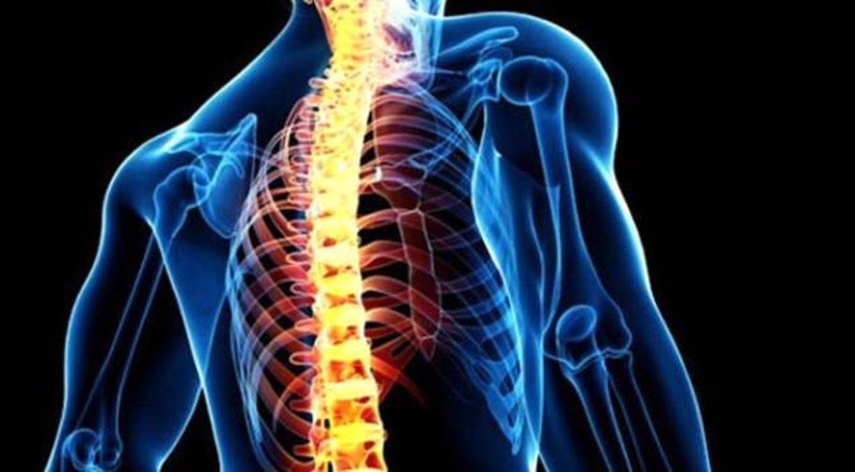 omurga sagligini nasil koruyabiliriz omurga 14162486 1998 amp