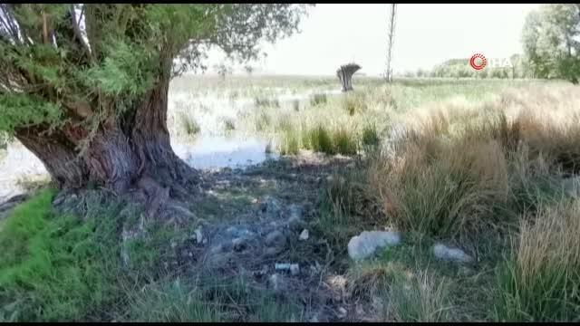 Büyük Menderes Nehri'nde kuraklık tehlikesi baş gösterdi