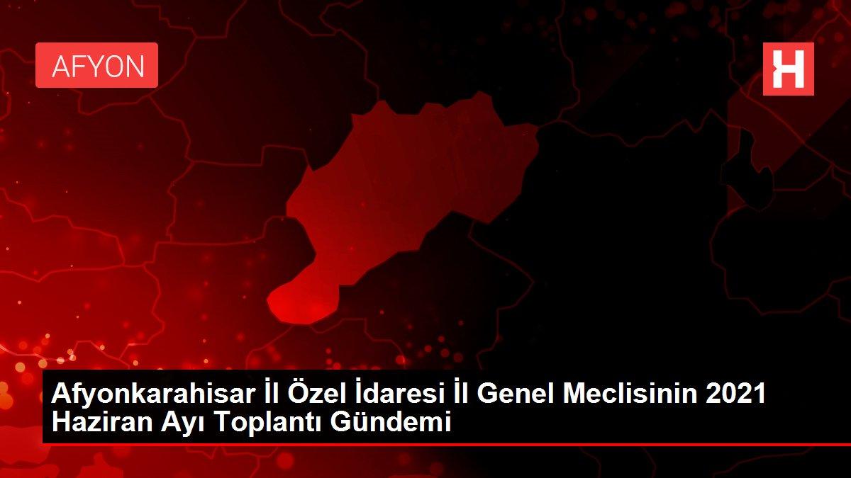 afyonkarahisar il ozel idaresi il genel mecli 14170636 local
