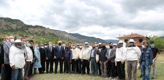 Avni Çakır: Bilinçli arıcılar Tosya'da yetişecek