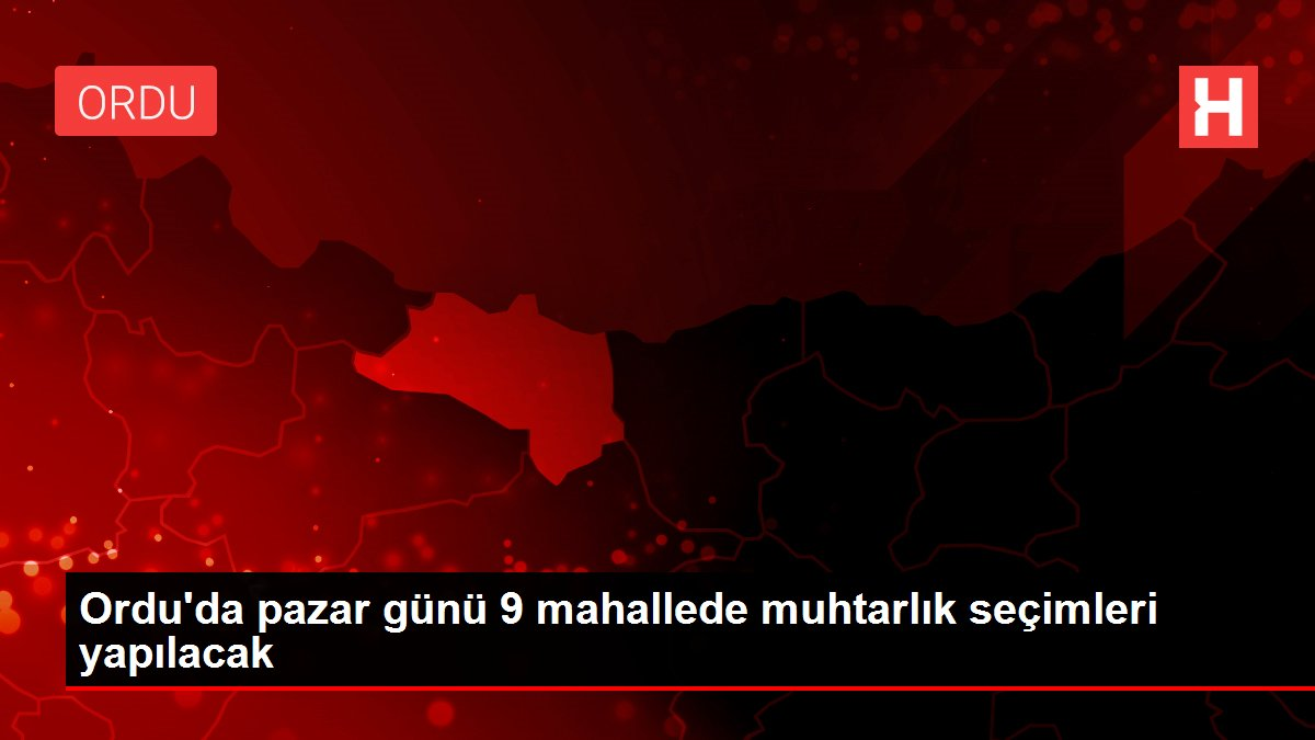 Ordu'da pazar günü 9 mahallede muhtarlık seçimleri yapılacak