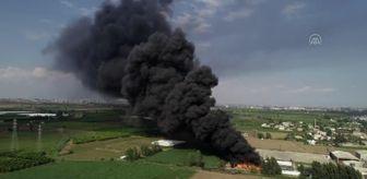 Küçükdikili: Son dakika haberi! Geri dönüşüm tesisinin bahçesinde çıkan yangına müdahale ediliyor (3)