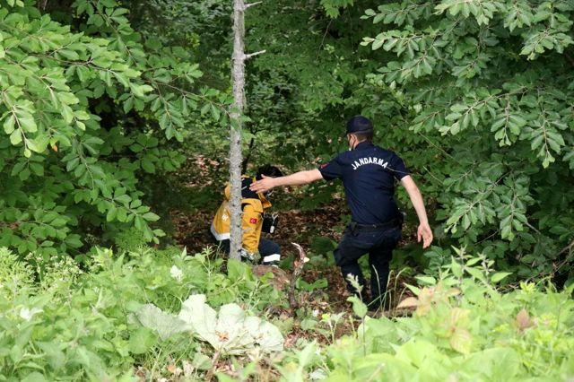 Son dakika haber: Bolu'da, devrilen ağacın altında kalan vatandaş hayatını kaybetti