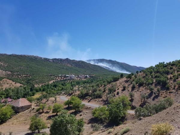 Son dakika haberi | Görese Dağı'ndaki orman yangını 5'inci günde de sürüyor